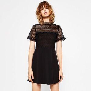 Zara woman lace bodice short sleeve skater dress